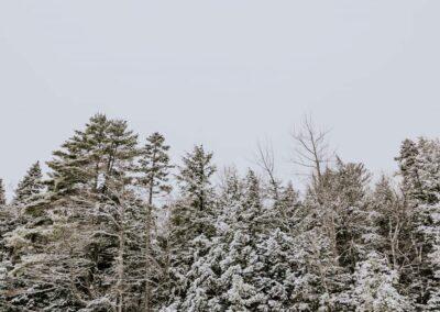 Scarborough, ME / SFC Maine